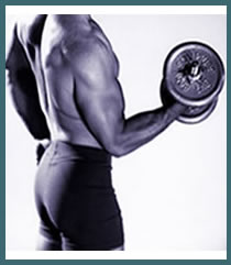 Get ripped & build muscle fast